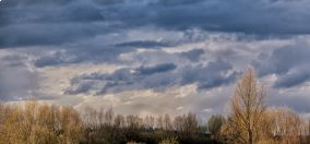 IMG_8795a